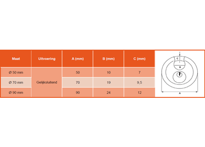 Discusslot RVS gelijksluitend-2