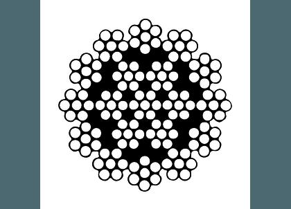 SKZDV19704